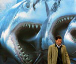 O que são os Paraísos fiscais - imagem de sharks-cityslicker