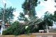 O vendaval derrubou postes