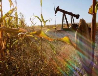 Segundo o Departamento de Agricultura dos Estados Unidos, no ano passado foram consumidos nesse país 53,302 bilhões de litros de etanol feito do milho, para cuja produção foi destinada 40% da colheita do grão.
