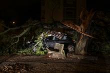 Viatura atingida pela queda de árvores em Coimbra em consequência da tempestade Leslie, 13 de outubro de 2018 - Foto Paulo Novais/Lusa
