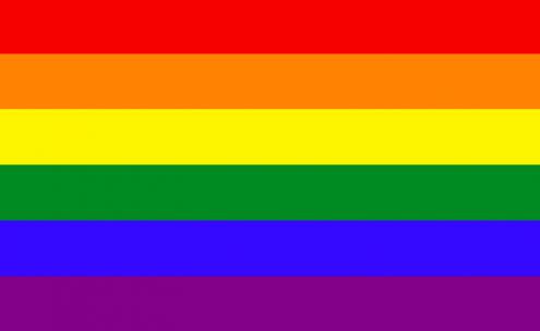 Tendo em conta a refutabilidade de todos os argumentos que o Presidente apresenta, apelamos a que compareçam na concentração convocada pela Resistência Queer, no dia 12 de maio (sábado), às 16 horas, no Jardim Afonso de Albuquerque, em Belém, de modo a protestar contra o veto de Marcelo Rebelo de Sousa.