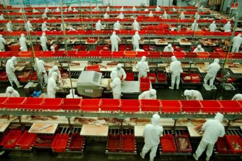 """""""A combinação de uma política financeira favorável ao setor exportador, uma moeda subvalorizada e baixos salários da mão-de-obra foi uma fórmula que levou a uma avalanche de produtos chineses baratos em todo o mundo"""""""