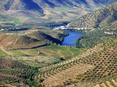 Douro Wine Region. Foto Howard Lifshitz/Flickr