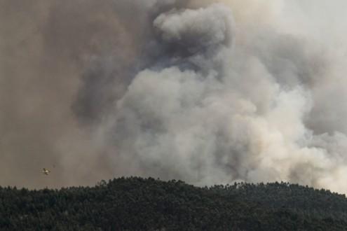 Incêndio florestal em Ferreira do Zêzere, 13 de agosto de 2017 – Foto de Paulo Cunha/Lusa