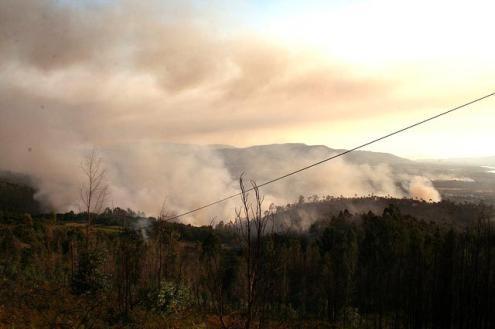 10.416 fogos consumiram 141.000 hectares, mais 26.000 face a 2016 — Incêndios