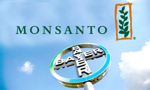 Logotipos da Monsanto e da Bayer.
