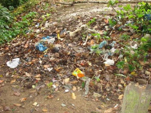 Para a Quercus, a nova lei poderá não resolver o incorreto encaminhamento de resíduos. Foto Cultura Mix