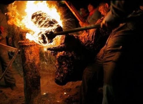 GNR investiga grupo que pegou fogo a cornos de touro