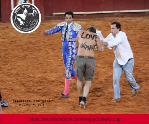 Ativistas antitourada agredidos em Albufeira