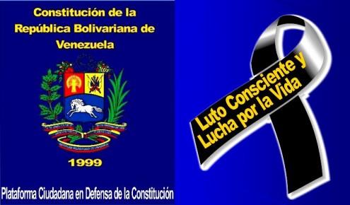 Plataforma Cidadã em Defesa da Constituição da Venezuela exige ao CNE que o povo possa decidir se quer ou não uma Assembleia Constituinte através de um referendo revogatório do decreto do presidente Maduro