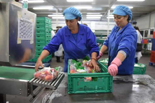 O aumento do salário mínimo nacional para 580 euros mensais concretiza-se já em Janeiro e abrangerá mais de 700 mil trabalhadores. Foto de Paulete Matos.
