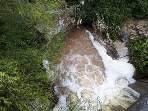 """Pedro Soares defende que haja um processo de descontaminação nos solos. Considera-o urgente no âmbito de um """"problema ambiental muito complexo"""", agravado """"pelos efeitos do incêndio do Pinhal de Leiria""""."""