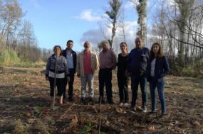 Aveiro: Bloco defende medidas de proteção florestal