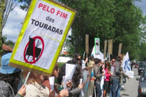 Ação promovida pelo Bloco de Esquerda em Lourosa, em maio de 2012, de protesto contra a realização de uma tourada, então com o apoio da Câmara Municipal de Santa Maria da Feira.