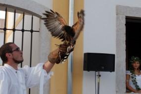 Falcoaria portuguesa foi elevada a Património Imaterial da Humanidade. Foto do site O Ribatetejo