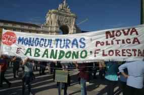 """Em Lisboa, o Terreiro do Paço acolheu a iniciativa """"Basta! Por um Futuro Sustentável!"""", à qual se juntaram activistas reclamando uma nova política florestal, contra o abandono e as monoculturas."""