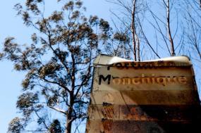 Monchique: Bloco cancela comícios no Algarve e acompanha situação no terreno