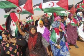 As mulheres saharauis deparam-se com o poder dos colonizadores, que oprimem seu modo de vida, obrigando-as a encontrar novas formas de resistência