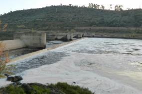 Bloco de Esquerda denuncia descarga de esgoto para o rio Tejo