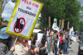 """Maria Rola do Bloco afirmou que """"não é mais aceitável social, científica e politicamente a violência sobre os animais"""""""