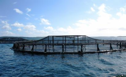 Rede de Aquacultura. Foto de National Ocean Service/Flickr.
