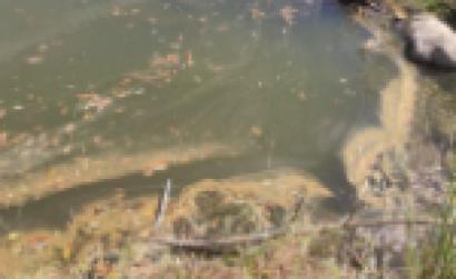 Poluição no rio Ocreza. Foto do Interior do Avesso.