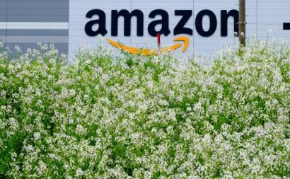 Amazon. Foto: m. mikeneko355/Flickr