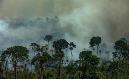 Imagem aérea de queimadas na Área de Proteção Ambiental Jamanxim na cidade de Novo Progresso, Estado do Pará. (Foto Victor Moriyama Greenpeace)