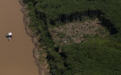 Amazónia perde área equivalente a território de Espanha em vinte anos