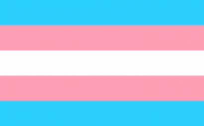A Lei n.º 38/2018, de 7 de agosto, entra em vigor esta quarta-feira. Assim, qualquer pessoa trans com mais de 18 anos tem direito a alterar os seus documentos com base unicamente na sua autodeterminação.