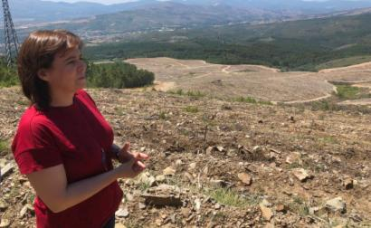 """Catarina Martins afirmou: """"o eucalipto pode ser a espécie de rentabilidade mais rápida, mas é a espécie que causa mais vítimas"""" – Foto esquerda.net"""