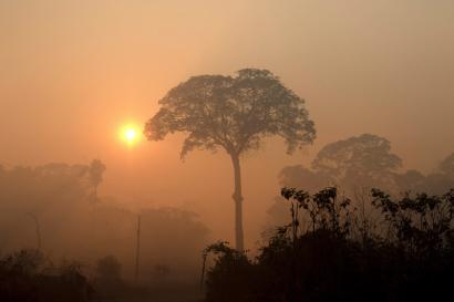 Fumo dos incêndios da Amazónia obscurece o sol perto de Porto Velho, Rondónia, Brasil. Foto de Joedson Alves, Lusa/EPA
