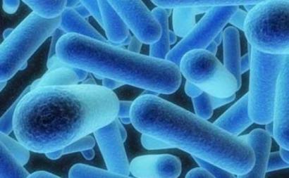 Legionella – Foto de sidknee23/flickr