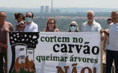 Ambientalistas em protesto contra a queima de árvores. Foto da Associação Ambientalista Zero.