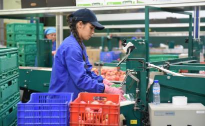 Trabalhadoras de uma cooperativa em Moimenta da Beira. Foto de Paulete Matos.