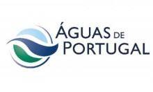 Grupo Águas de Portugal desrespeita as regras do Código de Contratos Públicos, conclui o Tribunal de Contas