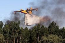 Avião larga água sobre um eucliptal a arder – Vendas Novas, 2 de julho de 2017 – Foto de Miguel A. Lopes/Lusa
