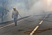 Incêndios do primeiro semestre de 2017 aumentarem em seis vezes a área ardida em Portugal este ano. Foto de Octavio Passos/Lusa.