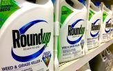 Embalagens de RoundUp. Foto de Mike Mozart/Flickr.