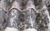 Placas de amianto.