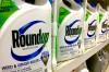 Glifosato, conhecido pelo nome comercial de Roundup, continua a poder ser utilizado em atividades agrícolas em Portugal.