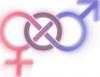 """Os deputados terão até ao fim deste ano para legalizarem um """"terceiro género""""."""