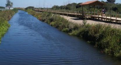 O atual cenário paisagístico proporcionado pela rede de passadiços e todas as atividades que vão sendo promovidas na laguna, fazem a Barrinha ganhar nova vida - foto de José Lopes