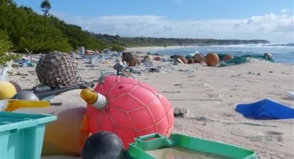 Imagem da praia Este da ilha Henderson, por Tara Proud.