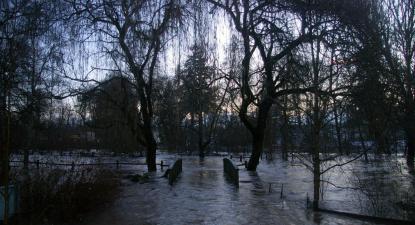 Aumento do nível do mar ameaça 2,5 milhões de casas nos EUA