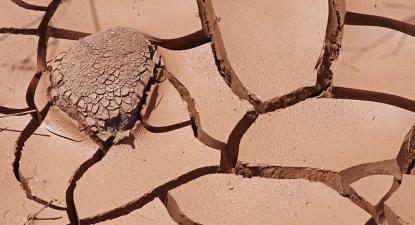 Terra seca.