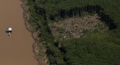 Desmatamento Amazónia