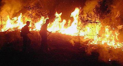 Bombeiros combatem as chamas no estado do Acre, Amazónia brasileira. Foto Lusa/EPA.