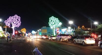"As ""arbolatas"" na avenida Bolívar, Manágua. Foto de Byralaal, wikimedia commons"