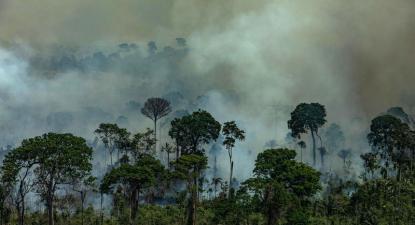 Imagem aérea de queimadas na Área de Proteção Ambiental Jamanxim na cidade de Novo Progresso, Estado do Pará. (Foto: Victor Moriyama / Greenpeace)